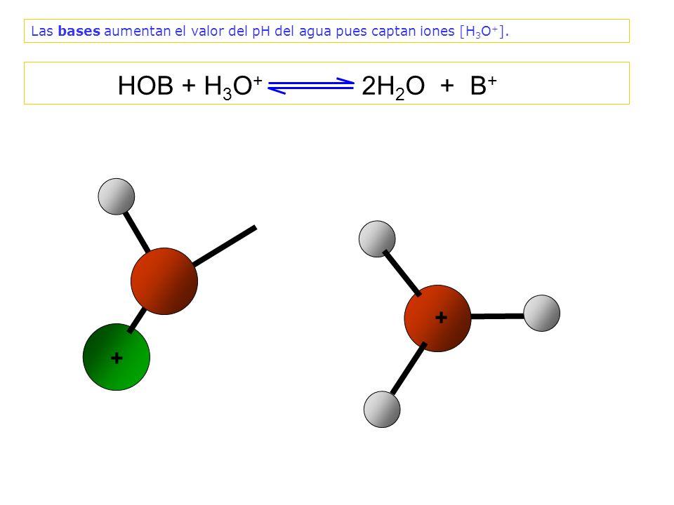 Las bases aumentan el valor del pH del agua pues captan iones [H3O+].